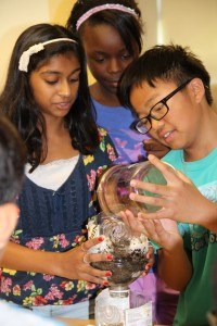 Amazing Summer Science Camp - Session 1